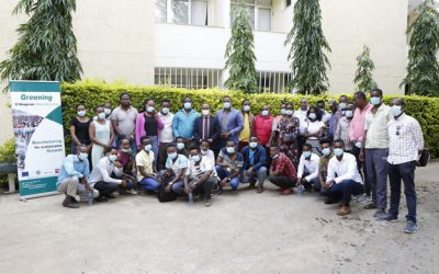 GEM Project has organized GEM project dissemination and replication workshop