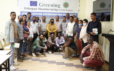 GEM Project had organized GEM project dissemination and replication workshop